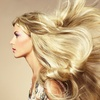 Up to 71% Off Haircut Packages