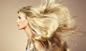 KC Salon: Haircut, Conditioning, and Blowout with Optional Color or Partial Highlights at KC Salon (Up to 72% Off)