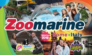 Ingresso a Zoomarine, Roma: Zoomarine: ingressi per il parco divertimento di Roma (sconto fino a 44%)