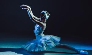 """Schwanensee: 2 Tickets für """"Schwanensee"""" im Dezember 2018 mit dem Klassischen Russischen Ballett (bis zu 52% sparen)"""