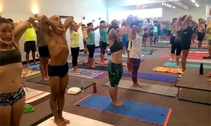 Bikram Yoga OKC: 5, 10, or 25 Bikram Hot Yoga Classes at Bikram Yoga OKC (Up to 52% Off)