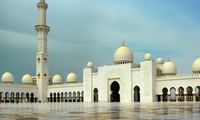 Abu Dhabi or Dubai City Tour with Safari in UAE