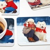 Up to 81% Off Custom Photo Coasters from PrinterPix