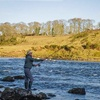 Introduction to Salmon Fishing