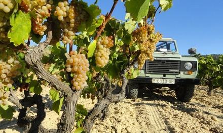 Visita a la bodega Cuscó Berga con cata de vinos para 2, 4 o 6 personas desde 12,99 €