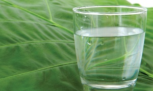 H2TO: CC$185 for Ecowater Systems Home Lead Removal Water-Filter and Installation from H2TO (CC$375 Value)