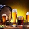 44% Off Half-Day Beer, Cider & Wine Tour