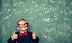 Idiom Sprachschule: 1 oder 3 Monate Sprachkurs nach Wahl in der Idiom Sprachschule (84% sparen*)
