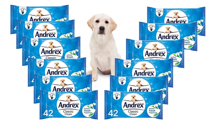 12, 24 or 36 Packs of Andrex Washlets Flushable Toilet Tissue Wipes from £12.98