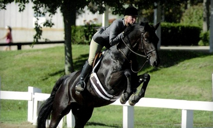 Hunters Pointe Farm - Carmel: Horseback-Riding Lessons at Hunters Pointe Farm (Up to 56% Off). Three Options Available.