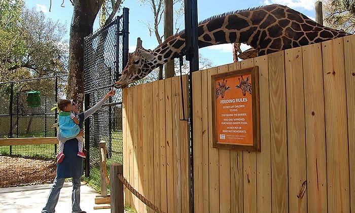 Central Florida Zoo U0026 Botanical Gardens