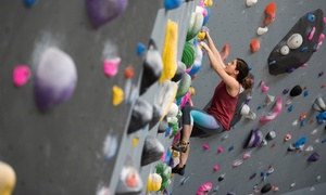 Up to 91% Off Trial Membership at Rock Mill Climbing at Rock Mill Climbing, plus 6.0% Cash Back from Ebates.