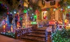 Solar-Powered Christmas Lights
