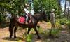 Passeggiata a cavallo, 60 minuti