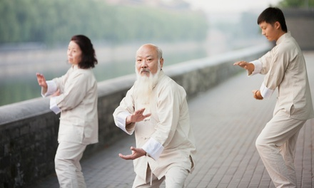 Tai Chi and Chi Kung Classes at NOLA Kung Fu with Sifu Tommy (50% Off). Three Options Available.