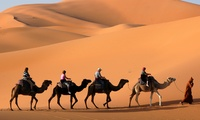 Six-Hour Dubai VIP Safari with Private Pick up for One, Two or Six with Red Dunes Tourism