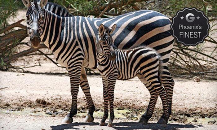 Wildlife World Zoo & Aquarium - Phoenix: Visit for a Child or Adult to Wildlife World Zoo & Aquarium (Up to $9 Off)
