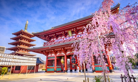 ✈ Japan: $2,599 Per Person for an 8Day Tour with Breakfast, Bullet Train Ride, Guide, Entry Fees and Flights