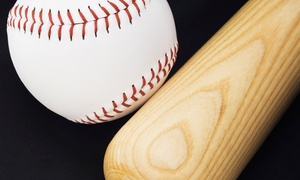 The Hit Factory Baseball and Softball Academy: Batting Session at The Hit Factory Baseball and Softball Academy (Up to 51% Off). Four Options Available.