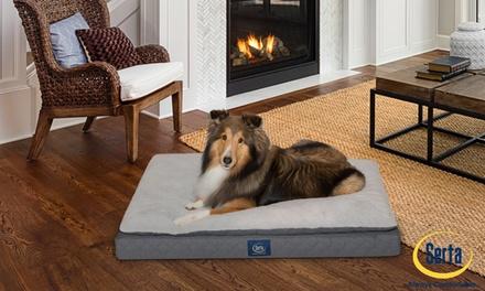 Serta Ortho Mattress Top Pet Bed