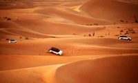 RAK Desert Safari with Centralised or VIP Doorstep Pick-Up and Drop-Off at Travel Guide Tourism (Up to 66% Off)