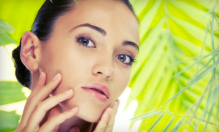 Choice of One Custom Signature, Age Renewal, or Acne Facial (a $65 value) - From Head to Toe Salon & Spa in St. Petersburg