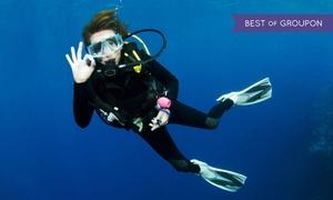 Best Divers: Kurs nurkowania dla początkujących lub zaawansowanych od 89,99 zł w Centrum Nurkowym Best Divers