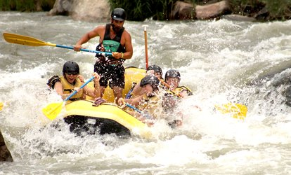 image for Half-Day Rafting Trip Through Middle Bighorn Sheep Canyon for Two or Four from Rock-N-Row (Up to 42% Off)