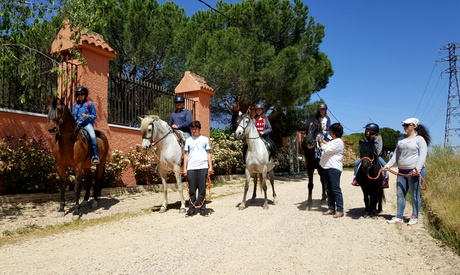 Paseo a caballo con snacks y bebidas para 2 o 4 personas desde 24,95 € en Centro Hípico Arco De Cubas