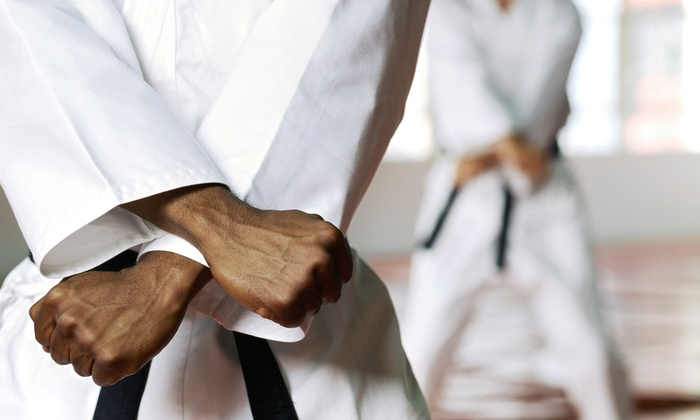 Premier Martial Arts Hardin Valley - 6: One or Three Months of Classes with Private Lessons and a Uniform at Premier Martial Arts Hardin Valley (Up to 88% Off)