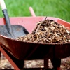 46% Off at Calloway's Landscaping And Preservation