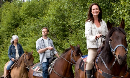 90-Minute Trail Ride on Horseback for Two or Four from Cactus Jack's Trail Rides (50% Off)