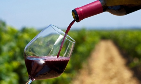 Cata de 4 vinos ecológicos para 2 o 4 con visita guiada y opción botella de vino o menú  Bodega ecológica Luis Saavedra