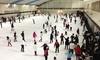ガーデンアイスアリーナ - ガーデンアイスアリーナ: 63%OFF【500円】50周年記念。大人も子どもも楽しく滑れる、氷の世界≪アイススケートリンク入場料+滑走料+貸靴代≫ @ガーデンアイスアリーナ