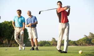 Randall's Island Golf & Entertainment Center: Entry to New York City Golf Expo with Optional Gift Bag, or Short Game Clinic at Randall's  Island (Up to 57% Off)
