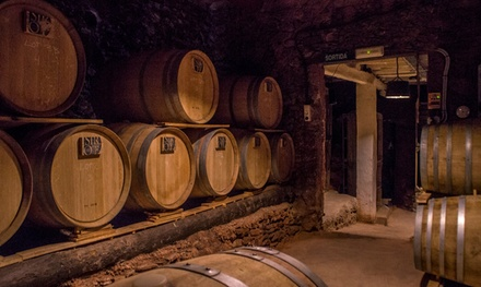 Visita guiada para 2, 4 o 6 con cata de vinos de cereza en Bodegas Sirot (hasta 44% de descuento)