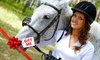 Bonogin Valley Horse Retreat - Bonogin Valley Horse Retreat: $599 for a Five-Day Horse Experience Package with Beach Ride and Day Spa at Bonogin Valley Horse Retreat ($1,200 Value)