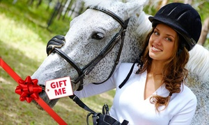 Bonogin Valley Horse Retreat: $599 for a Five-Day Horse Experience Package with Beach Ride and Day Spa at Bonogin Valley Horse Retreat ($1,200 Value)
