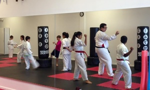 Hurricane Martial Arts: $31 for $89 Worth of Martial-Arts Lessons — Hurricane Martial Arts