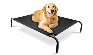 Elevated Steel-framed Comfort Pet Bed