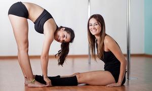 Pole Dance Training: 1 ou 2 meses de atividade fit: escolha entre 11 modalidades no Pole Dance Training – Jardim Camburi