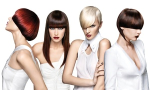 The TEMPLE: A Paul Mitchell Partner School: Student Salon Packages at The TEMPLE: A Paul Mitchell Partner School (Up to 74% Off). Two Options Available.