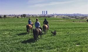 Hípica Montenegro: Paseo a caballo para adulto y/o niño con refresco y snack desde 19,95 € con Hípica Montenegro