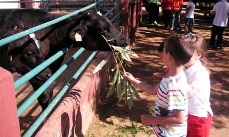 Entrada a granja-escuela para 1, 2, 4 o 6 personas desde 4,50 € en Cuna Granja Escuela
