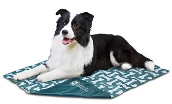 AKC Reversible Cooling Mat for Dogs and Cats