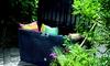 Gartenfreude Auflagenbox für den Garten in Anthrazit oder Braun