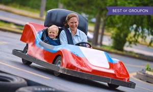 Up to 50% Off All-Day Play Pass at Rinky Dink at Rinky Dink, plus 6.0% Cash Back from Ebates.