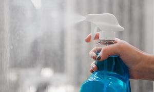 Die Schmutzlöser: Fensterreinigung für bis zu 7 oder 14 Fenster inkl. Putzmittel und Anfahrt durch Die Schmutzlöser (bis zu 64% sparen*)