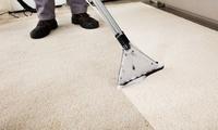 Reinigung eines Teppichs bei Clean Easy (bis zu 67% sparen*)