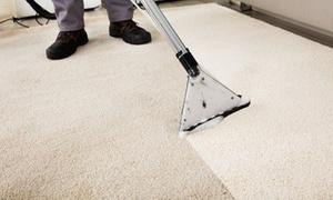 Clean Easy: Reinigung eines Teppichs bei Clean Easy (bis zu 67% sparen*)